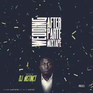 DJ Instinct - Wedding After Party Mixtape